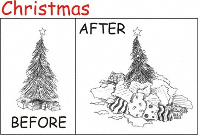 1336_1_shawn_xmas_before_after